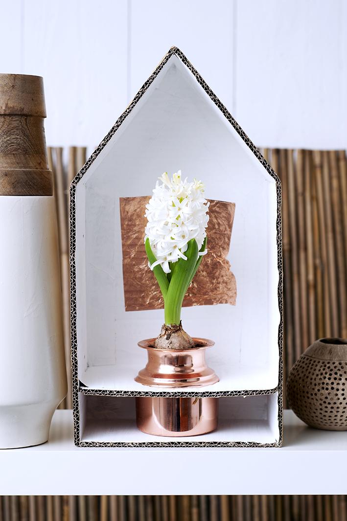 Een eigen huis voor je Hyacint
