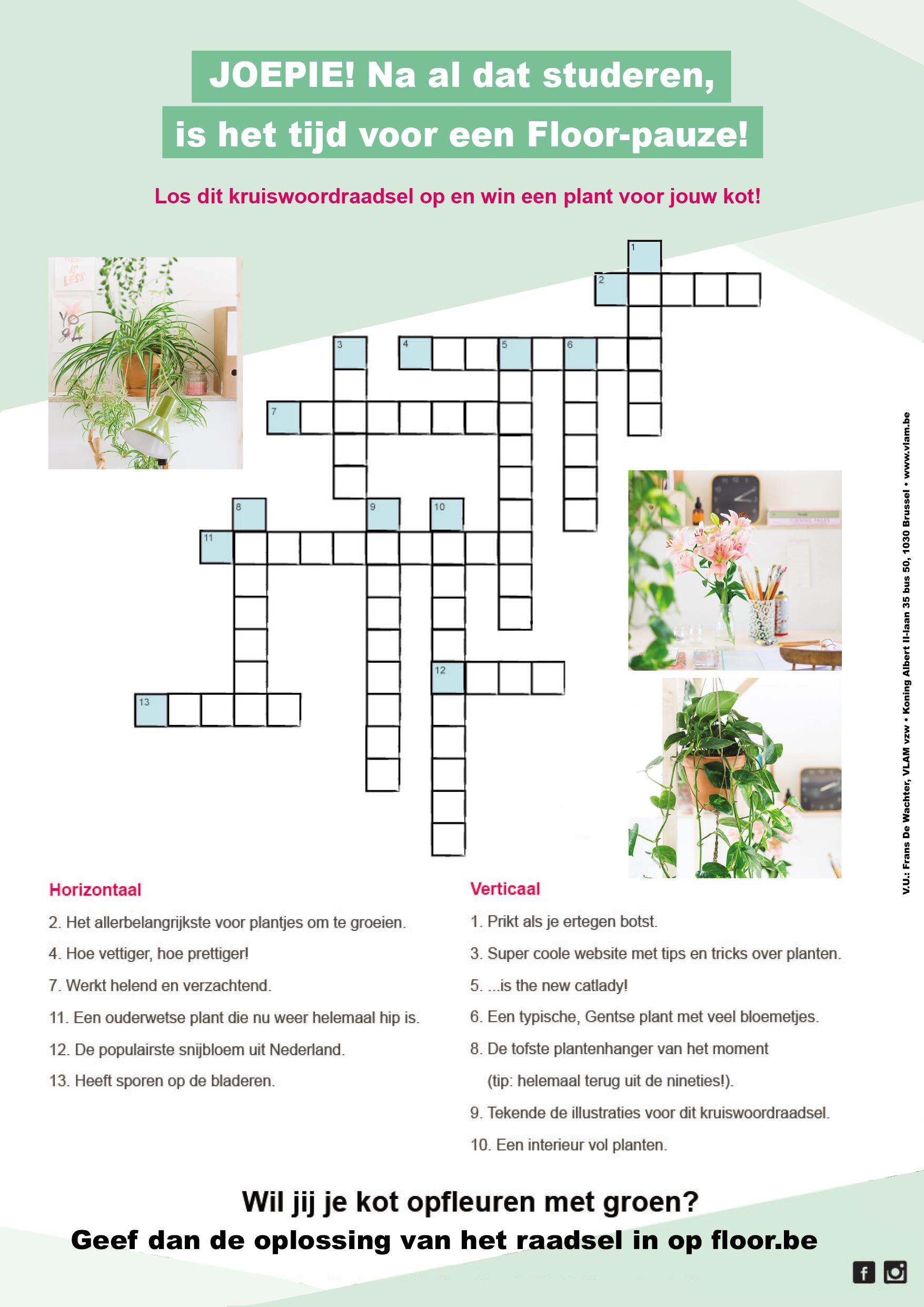 Win een kamerplant met Floor