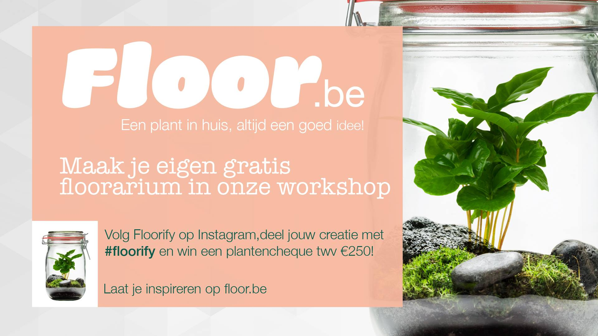 Volg een Floorarium workshop in jouw studentenstad en win!